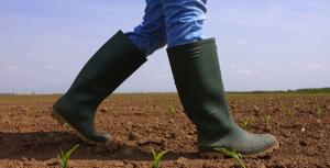 فروش عمده چکمه کشاورزی